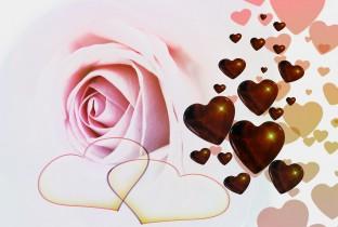 rose-588086_1280